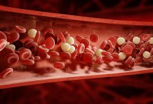 CGI Platelets moving through bloodstream