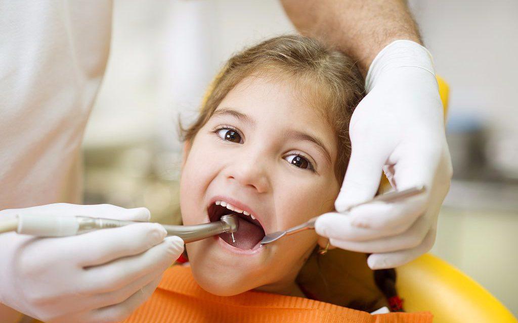 General Dental Care at Sarasota Dentistry