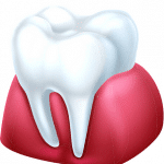 white tooth in gums